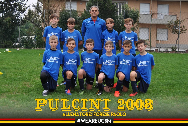 Pulcini 2008A
