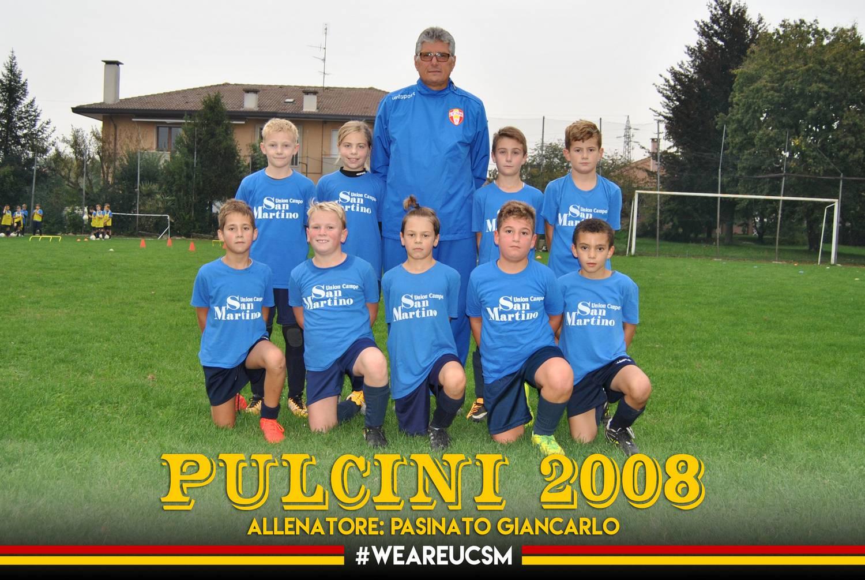 Pulcini 2008B